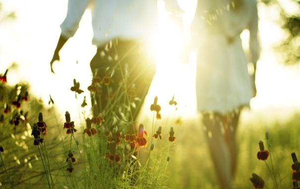 Фото обои поле, лето, свет, настроение
