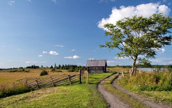 Фото обои дорога, поле, дом, дерево