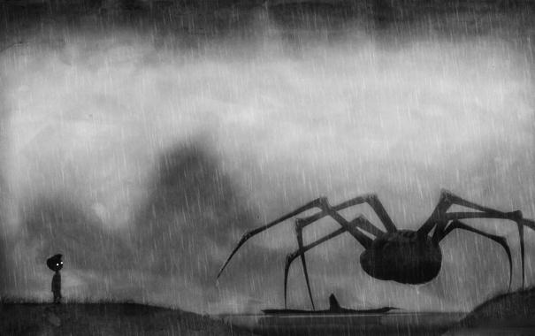 Фото обои паук, Limbo, река, дождь, мальчик
