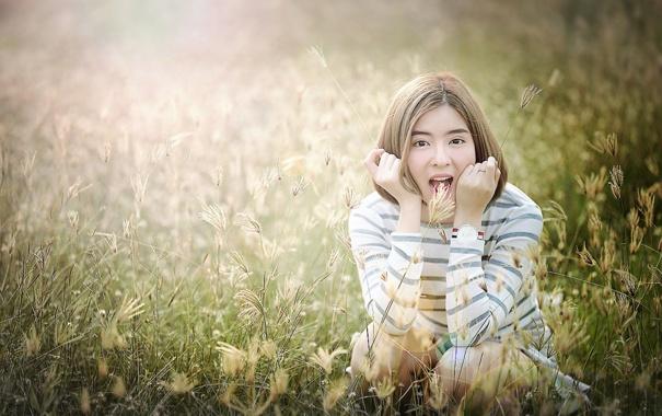 Фото обои поле, лето, трава, девушка, лицо, волосы