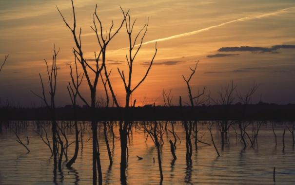 Фото обои небо, вода, деревья, закат, природа, отражение, река