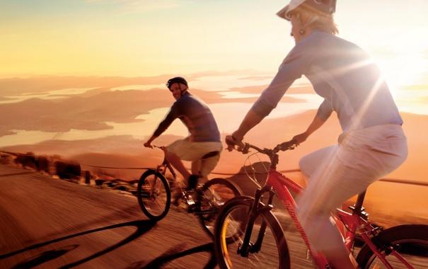 Фото обои дорога, природа, велосипедисты