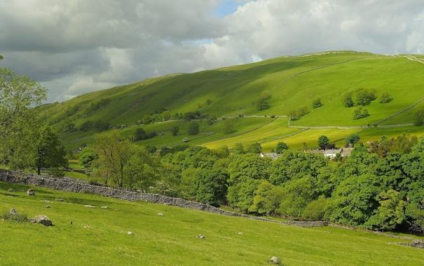 Фото обои деревья, поля, Англия, пастбище, England, Kettlewell