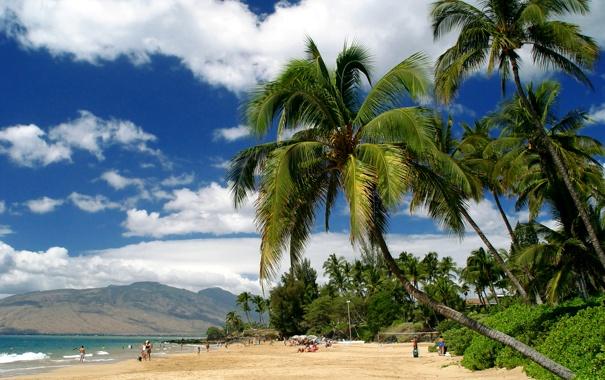 Фото обои песок, море, пляж, облака, горы, тропики, пальмы