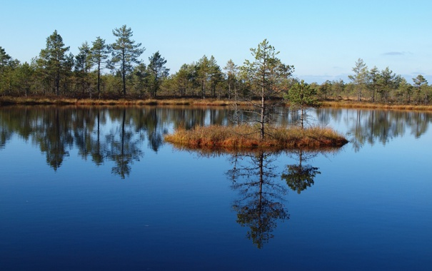 Фото обои небо, деревья, озеро, остров