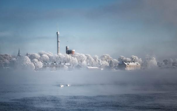 Фото обои зима, Швеция, Стокгольм, иней