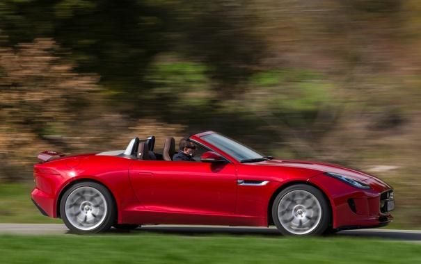 Фото обои красный, Jaguar, ягуар, автомобиль, F-Type