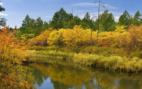 Фото обои осень, небо, вода, облака, лесЮ река
