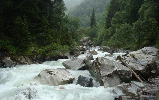 Фото обои зелень, река, камни, русская природа