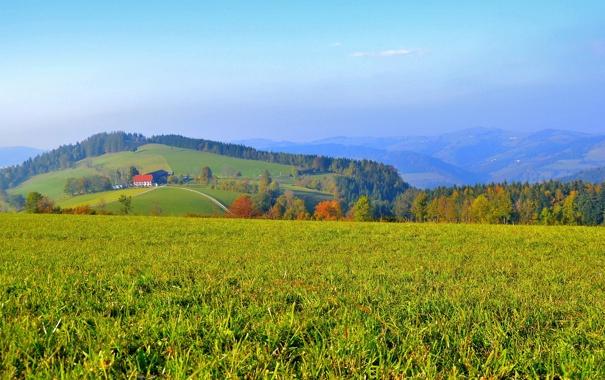Фото обои лес, дом, холмы, поля