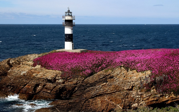 Фото обои море, цветы, скалы, побережье, маяк, Испания, Spain