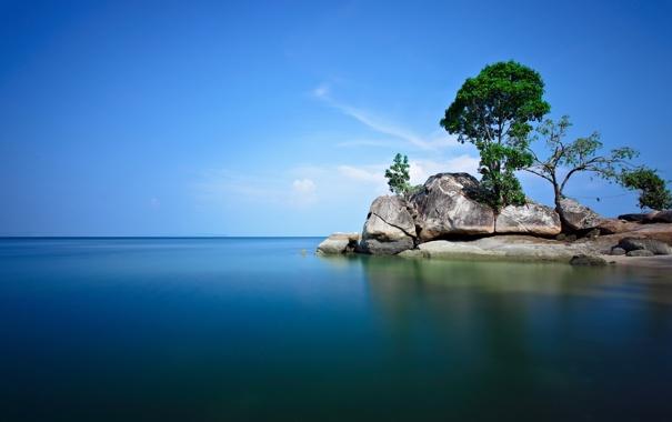 Фото обои море, небо, облака, деревья, скала, камни