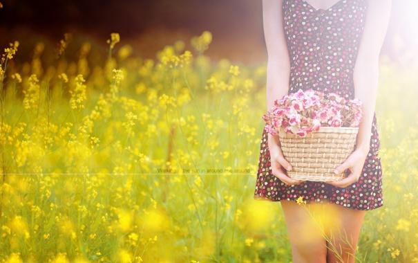 Фото обои поле, лето, девушка, цветы