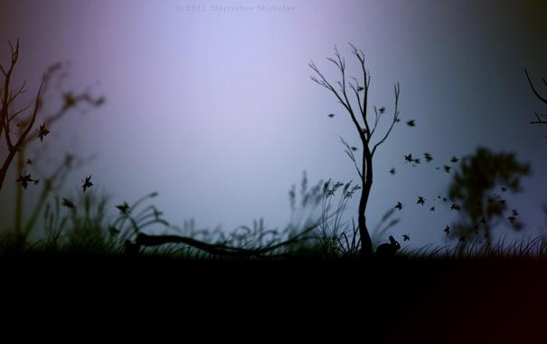 Фото обои животные, трава, деревья, птица, обои, игра, заяц