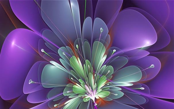 цветок сиреневый абстракция  № 3288287 загрузить