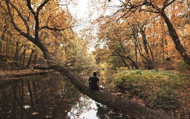 Фото обои river, trees, autumn, leaves, man, reflection, mirror