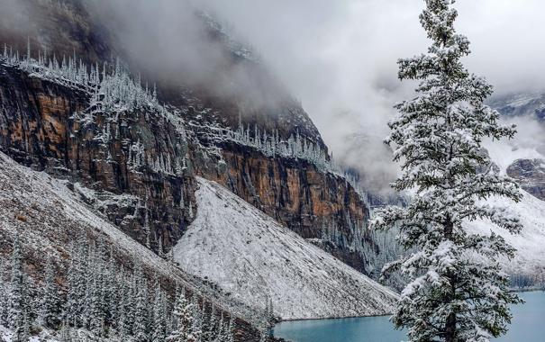 Фото обои зима, снег, деревья, горы, озеро