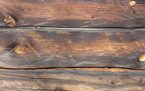 Фото обои светло-коричневый, сучки, конопатка, брёвна, брус, дерево