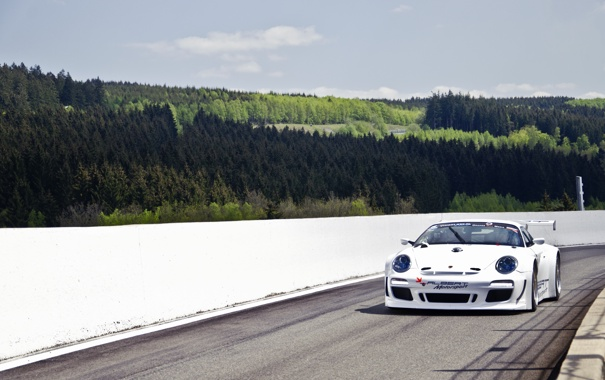 Фото обои белый, небо, 911, 997, Porsche, ели, сосны