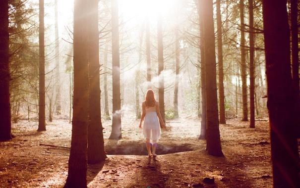 Фото обои лес, девушка, деревья, дым, шатенка