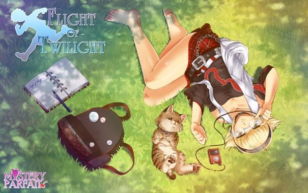 Фото обои кошка, музыка, аниме, наушники, девочка, сумка