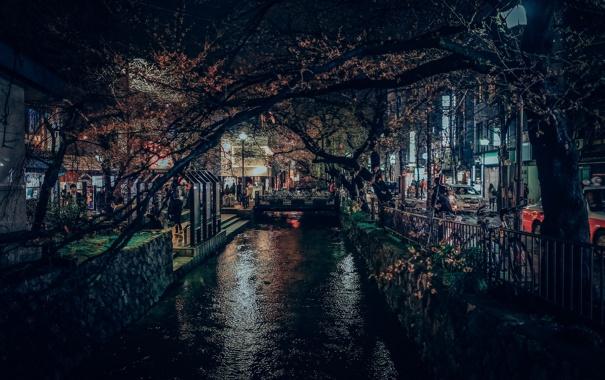 Фото обои свет, деревья, ветки, люди, Япония, канал, Киото