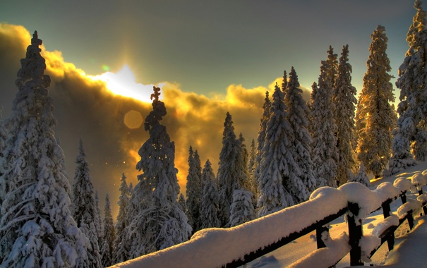Фото обои зима, лес, свет, горы