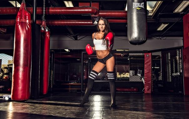 Фото обои sexy, model, pose, gloves, gym. boxing