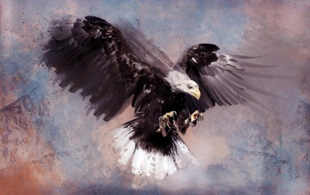 Фото обои горы, птица, хищник, арт, Орёл