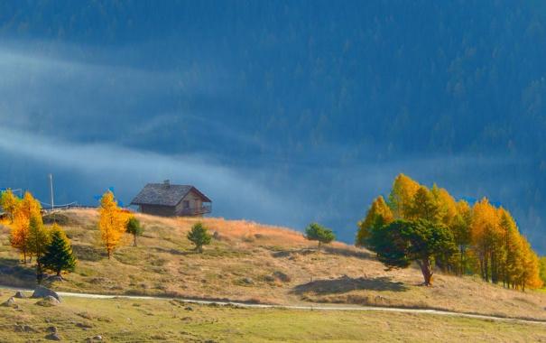 Фото обои дорога, осень, деревья, природа, камни, домик