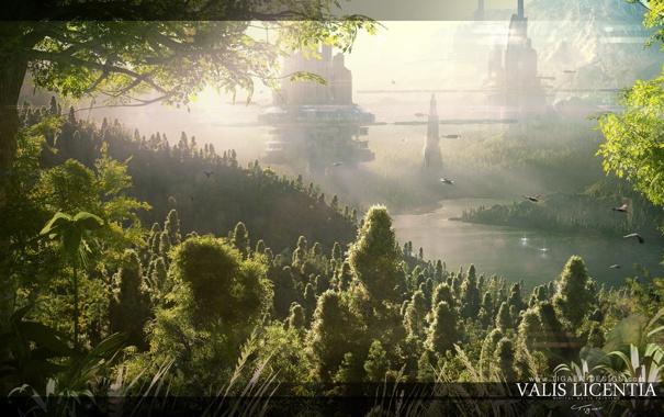 Фото обои лес, природа, город, планета