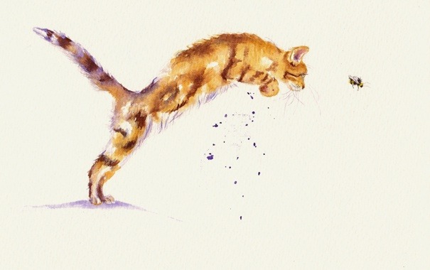 Фото обои кот, охота, пчёлка, акварель, игра, кошка
