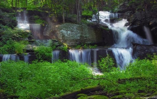 Фото обои скалы, водопад, Лес
