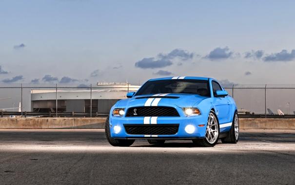 Фото обои авто, синий, фары, Shelby, GT500, мустанг, мускул-кар