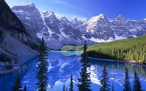 Фото обои лес, горы, озеро