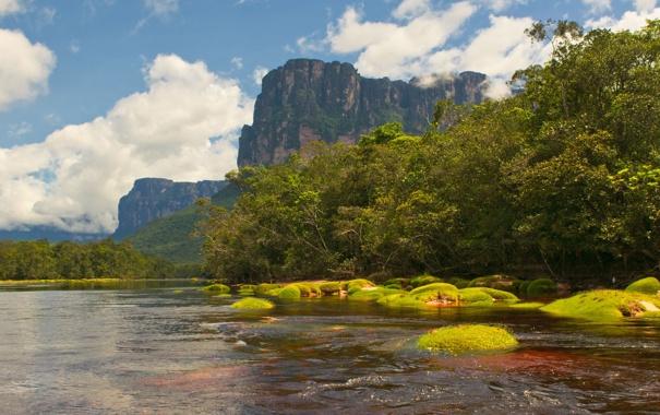Фото обои деревья, пейзаж, горы, река, природа.