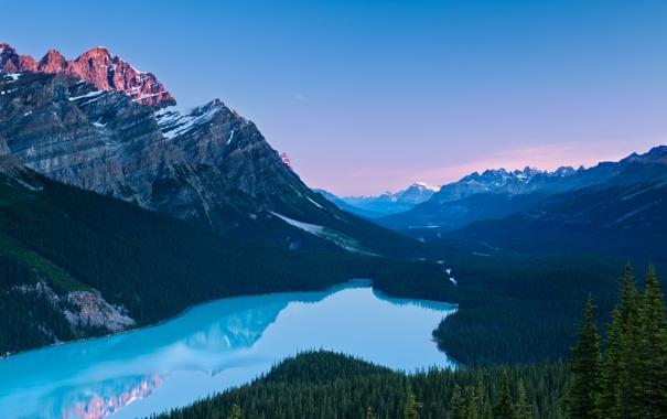 Фото обои лес, горы, река, канада