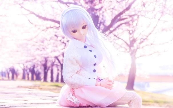 Фото обои весна, кукла, сакура