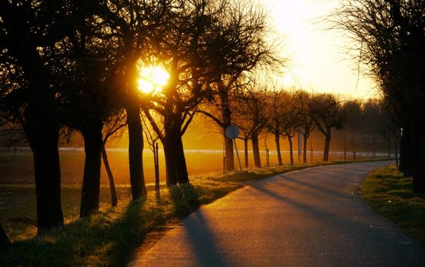 Фото обои дорога, солнце, деревья, закат, поля, вечер, поворот