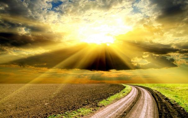 Фото обои дорога, поле, небо, солнце, облака, лучи, закат