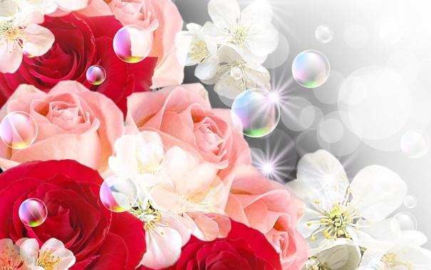 Фото обои цветы, пузыри, розы, bubbles, цветочки, flowers, roses