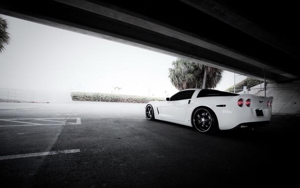 Фото обои парковка, корвет, белый, Chevrolet Corvette