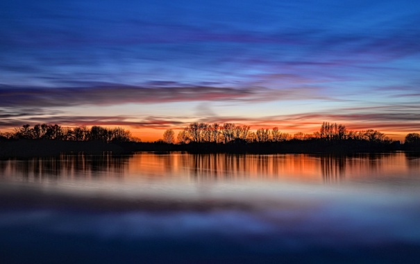 Фото обои небо, деревья, ветки, озеро, отражение, зеркало, силуэт