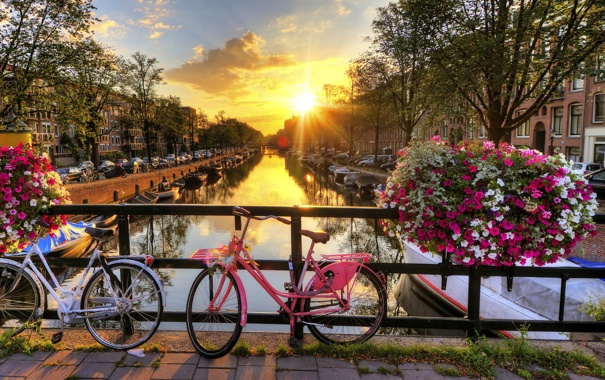 Фото обои солнце, закат, цветы, мост, велосипед, город, ограда