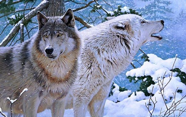 Фото обои зима, волки, живопись, Rod Lawrence