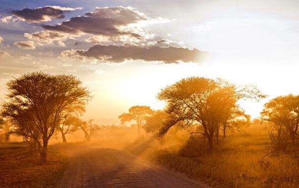 Фото обои дорога, пейзаж, утро, Африка