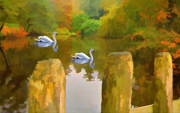 Фото обои озеро, картина, лебеди