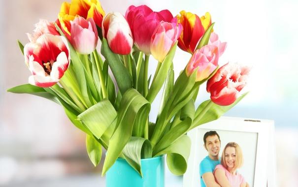 Фото обои цветы, фото, тюльпаны