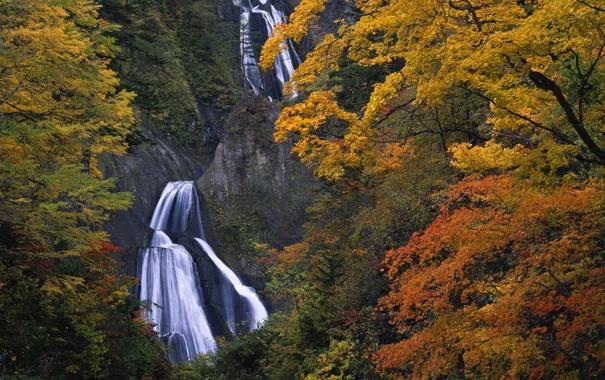 Фото обои осень, скалы, водопад