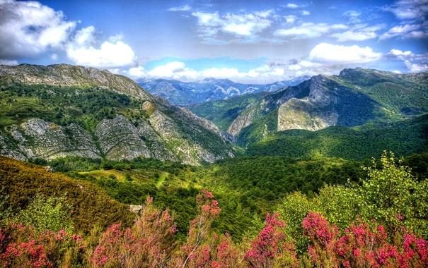 Фото обои горы, обработка, долина, ущелье, Испания, леса, Asturias